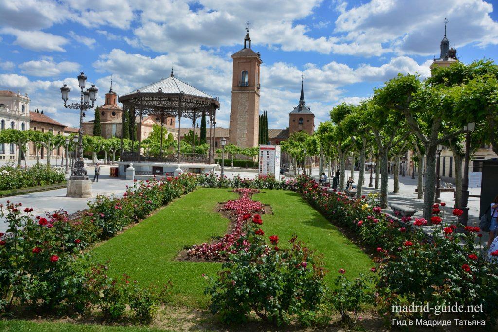 Экскурсия в Алькала-де-Энарес - Площадь Сервантеса