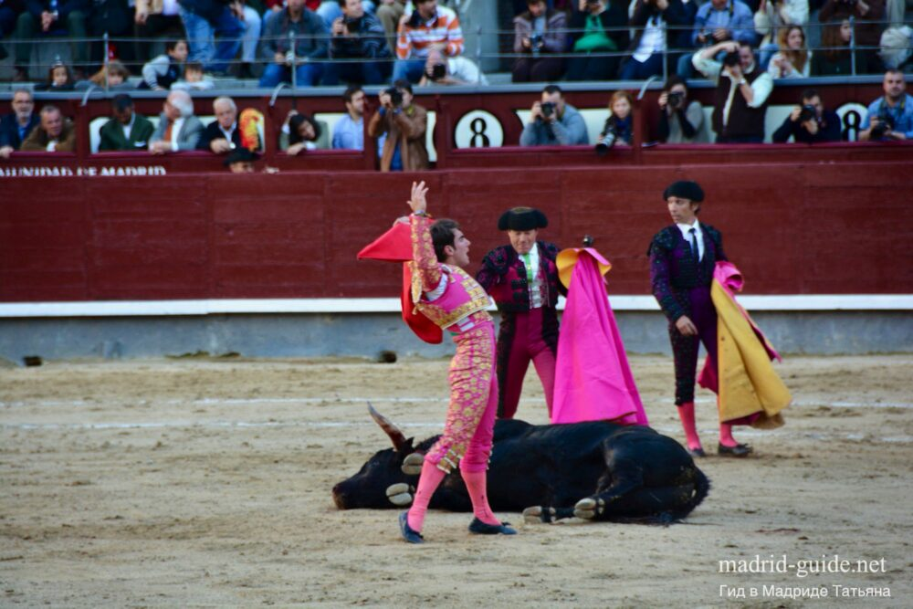Испанский Тореадор