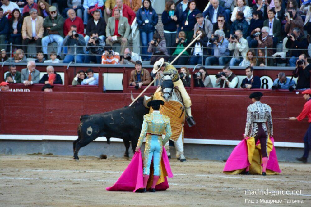 Коррида в Мадриде