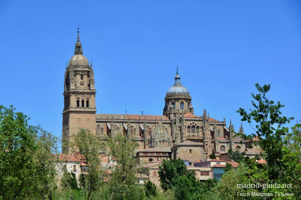 Кафедральный собор в Саламанке